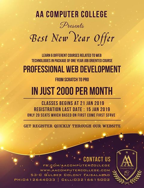 New Year Offer – Professional Web Development – www